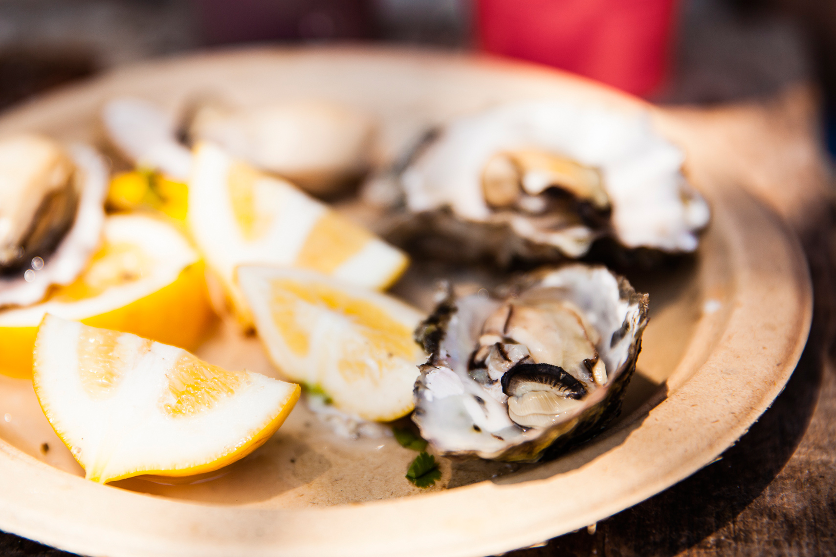 Amanda_Hibbert_Photography_food_editorial_oysters_seafood__MG_8065_sRGB_DesignX